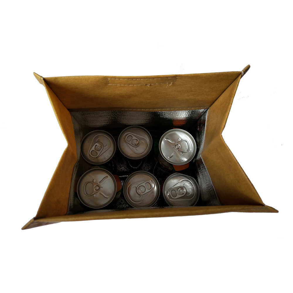 Brown Bag Lunch Cooler Bag